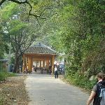 Walk to the Yangshuo city from Retreat