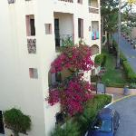 Dona Lola Buildings