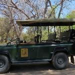 Game-drive Land Rover