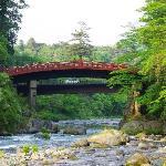 Vista sul ponte dal giardino