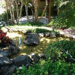 El jardincito del frente de la pousada