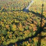 Aussicht über den Herbstwald