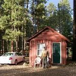Cute cabin!
