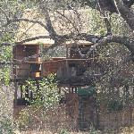 Chikoko Camp chalet
