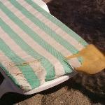 Broken mattresses on the beach.