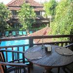 View from restaurant/breakfast room