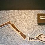 Fossil Arm