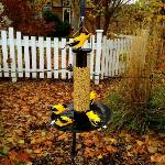 Bird feeder Lego sculpture
