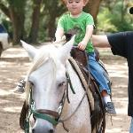 The boy on the horse