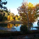 Pacific Shores - Autumn Estuary View from 200 Block
