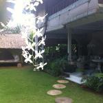 view from the entrance / orchids hanging on the trees (upstairs you see the balcony from 1 guest