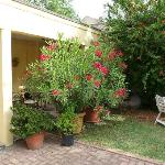 Vista Portico / giardino