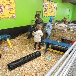 Petting barn