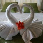Sweet towel animals