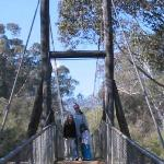 Avon River Suspension Bridge