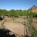 Horse yards at rear