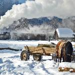 """With """"Elveţia"""" near Valea Rea as a backdrop, a horse-drawn cart pauses on the river"""