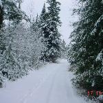 Winter at Snowshoe Country Lodge