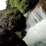 Natural Pool-CoffeaAroma Resort Wayanad