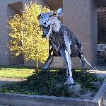 Outside Princeton Stadium