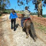 Passeio de ponei