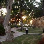 Vista desde el bungalow 1247