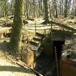 trenches around Ypres