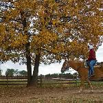 Autumn Horseback Riding
