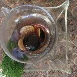 Breakfast 8 October 2012 - Black Figs in Port Wine