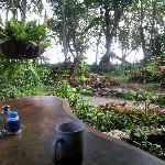 your view at breakfast