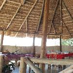 Dining in the airy Lapa