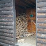 Plenty of firewood!