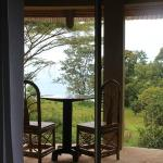 Ocean View Cabina Balcony