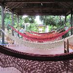 hammocks in the courtyard