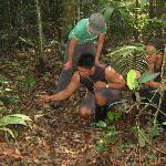 Mostrando alguns segredinhos da selva, mas não vou contar o que foi ...