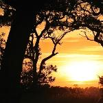 Sunrise, at the start of our safari.