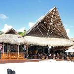 Pez Quadro Beach Club And 40 Canones Hotel