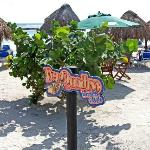 Pez Quadro Beach Club Sign