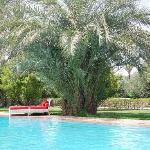 Une des nombreuses piscine