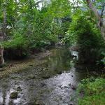 Busay Falls, Southern Leyte, Visayas