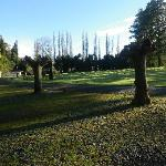 Late Afternoon Dannevirke holiday park