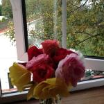 Our fresh roses from Noreen