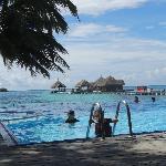 vue sur l'espace snorkling et la piscine