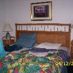 1 queen bed suite with couch