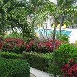 Manicured gardens and lovely pool, very well maintained