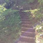the fun steps...pack light!