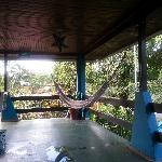 one of the many hammocks you an take a siesta on