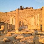 Le site de Pella, loin des hordes de touristes