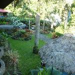 some of the beautifully landscaped garden