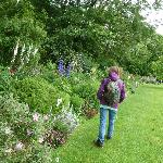Prt of the Herbacious Borders